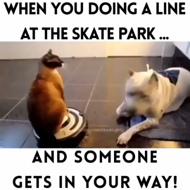 12519222 472067602985650 1307716747 n - When you doing a line at the skate park and someone gets in your way |  Repost ...