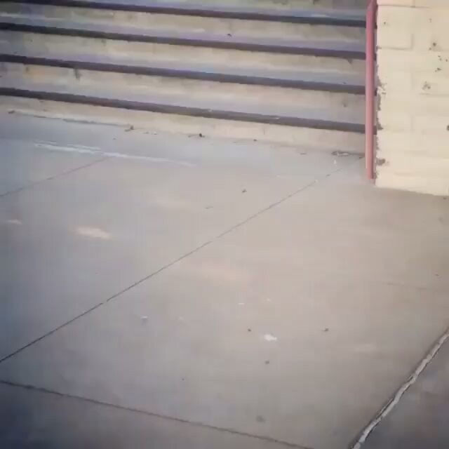 14052661 1219560841399108 2105577308 n - Double set firecracker by @murdythedawg : @zach.allen_ via @skateclipsdaily...
