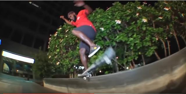 Skate Lhama