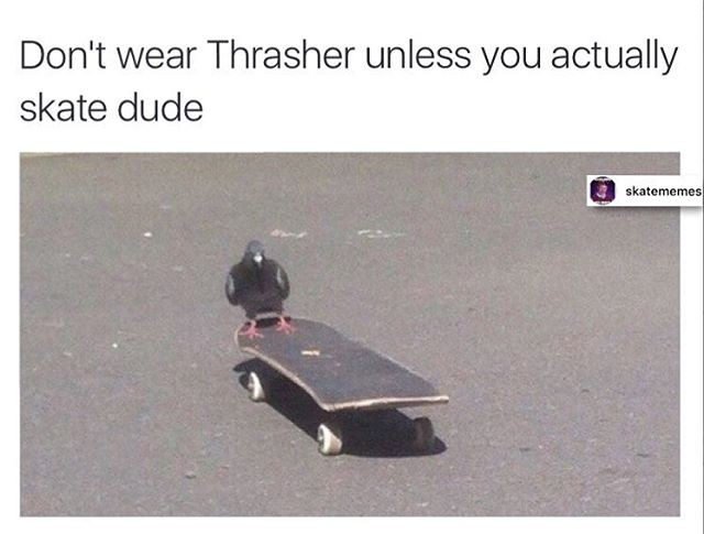 16906088 422454044760563 9134864662238593024 n - We all know a person...   Tag em'  Via @skatememes...