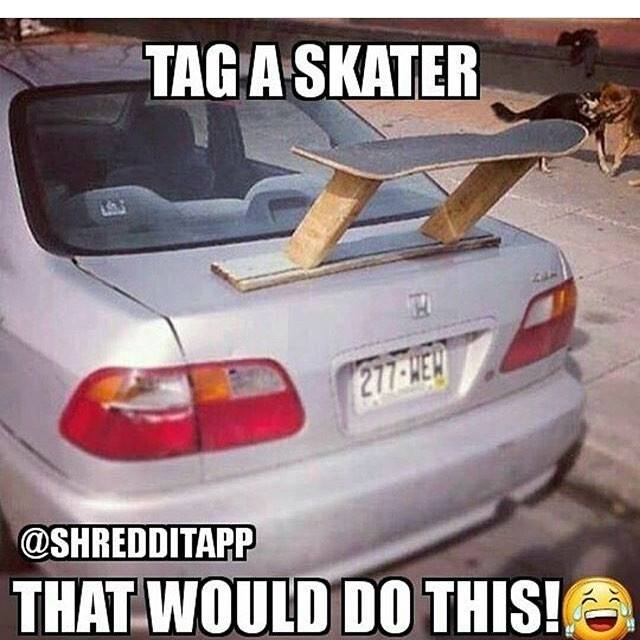 17662902 1183333835126458 5237768078384693248 n - Tag someone like this via @shredditapp...