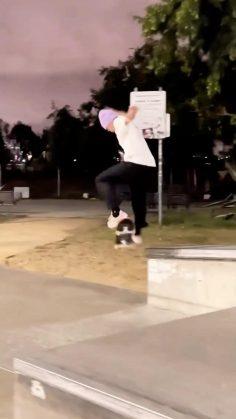 Making it look too easy @gustavoribeiro #shralpin #skateboarding…