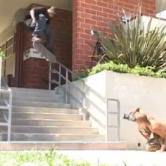 "#TBT A minute from @antwuandixon's ""Baker has a Deathwish"" part : @ericlongden &…"